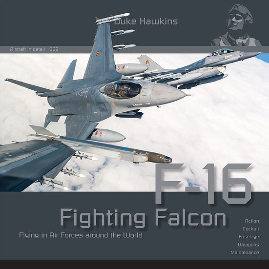 Aircraft in Detail: F-16 Fighting Falcon